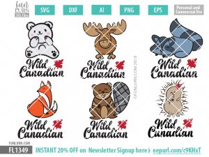 Polar Bear, Moose, Raccoon, Fox, Beaver, Porcupine