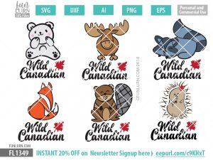 Polar Bear, Moose, Raccoon, Fox, Beaver, Porcupine