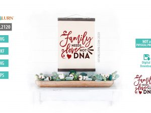 Family needs love not DNA