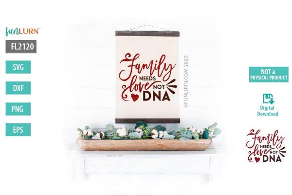 Family needs love not DNA